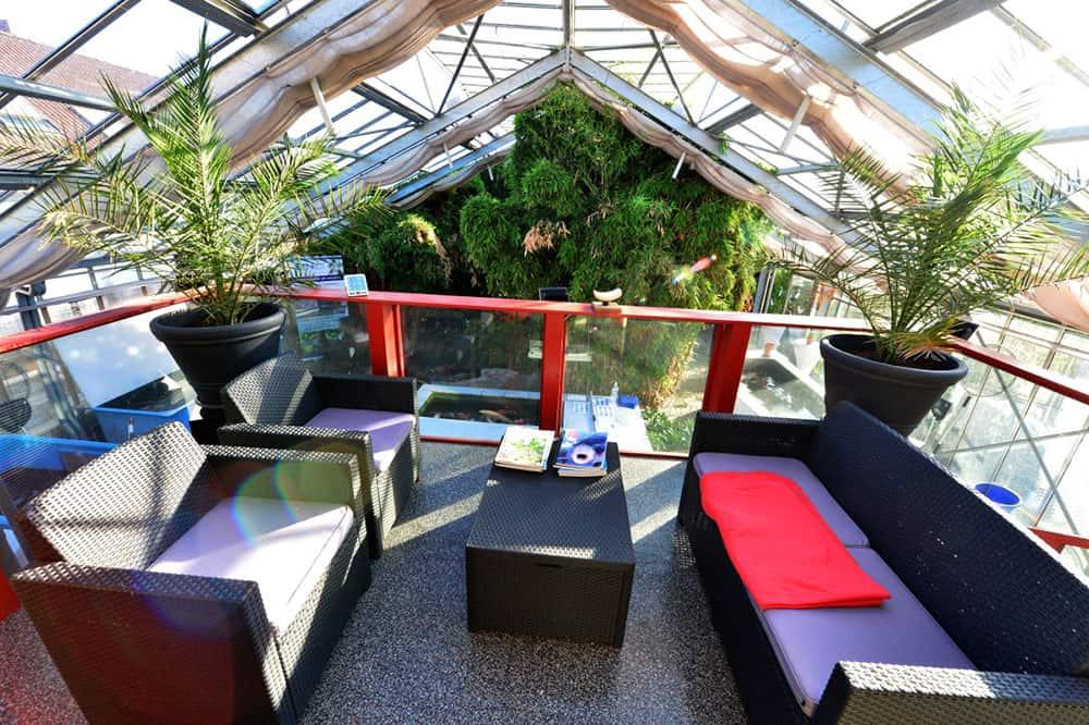 Koi Anderas Glashaus