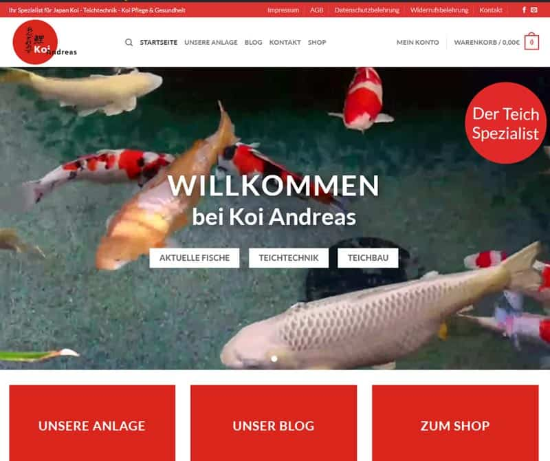 Launch der neuen Website